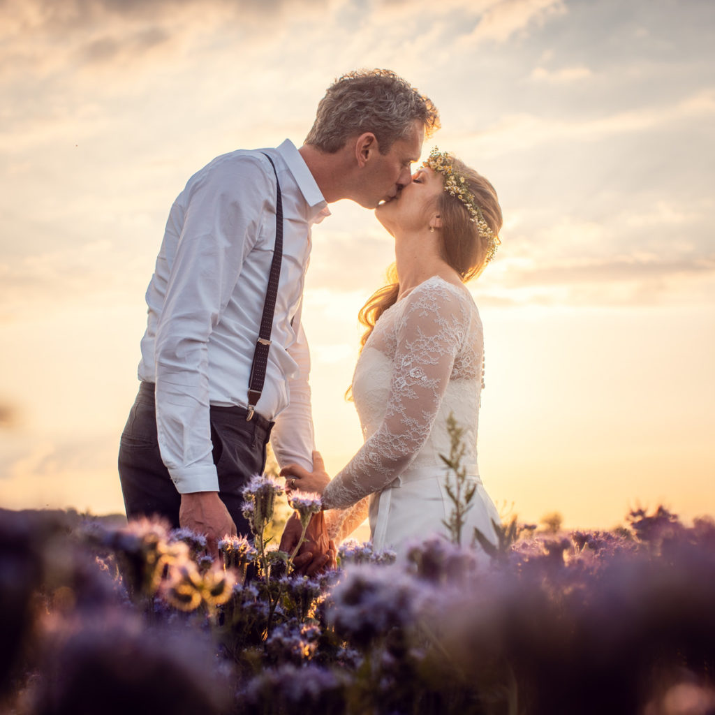 Wedding couple kissing in a field of violet stuff I have no name for
